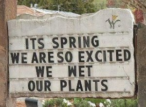 We wet our plants